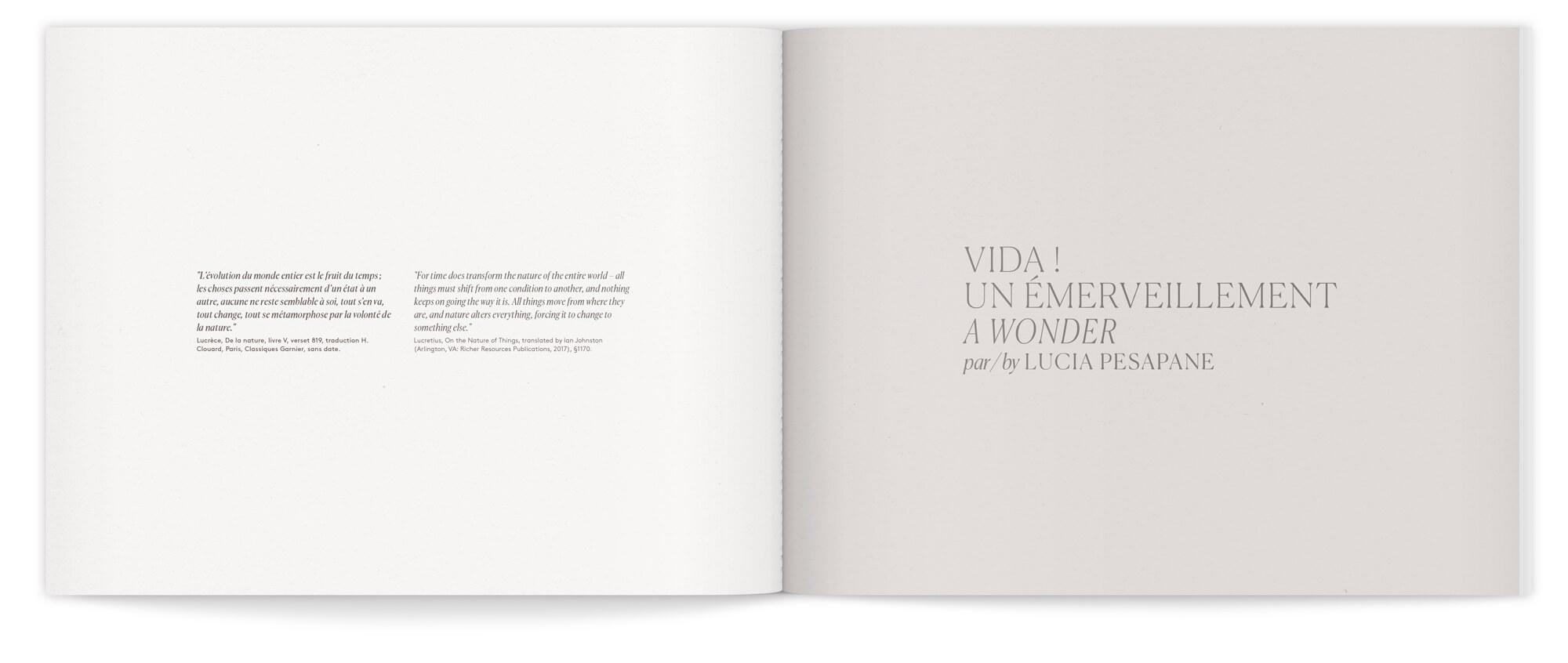 daniela-busarello-vida-livret-page-intro-ichetkar