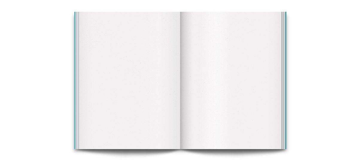 L'interieur de The book du condesa df, carnet, design Ichetkar
