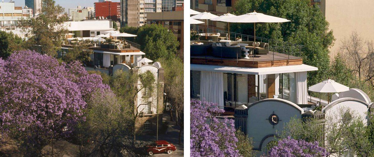 L'hotel et La terrasse du Condesa Df à Mexico, architecture d'intérieur par Indai Mahdavi