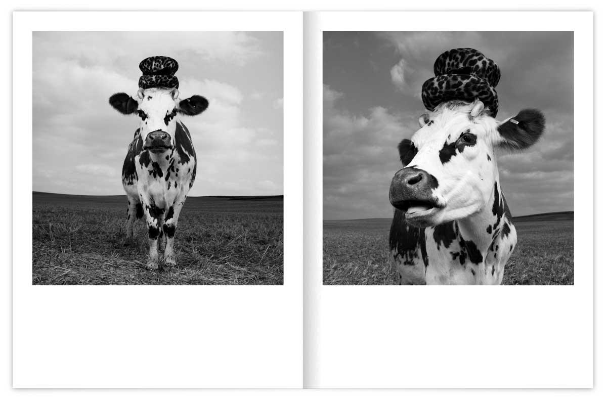 oh-la-vache-catalogue-Mondino-02_IchetKar