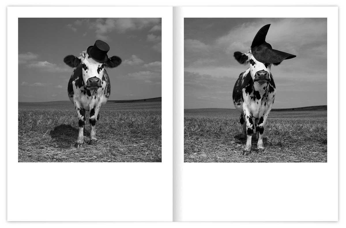 oh-la-vache-catalogue-Mondino-03_IchetKar