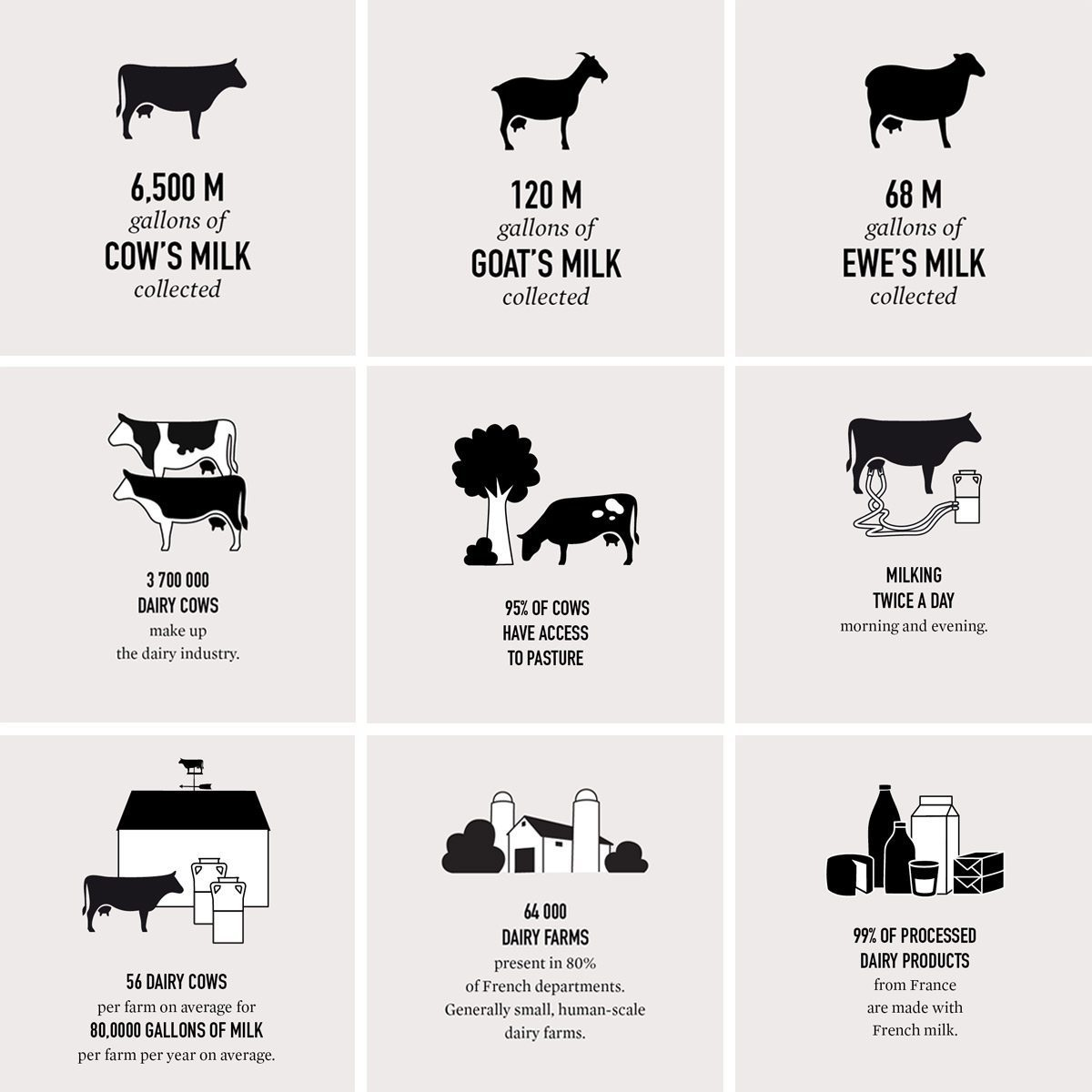 french cheese board milk facts ichetkar