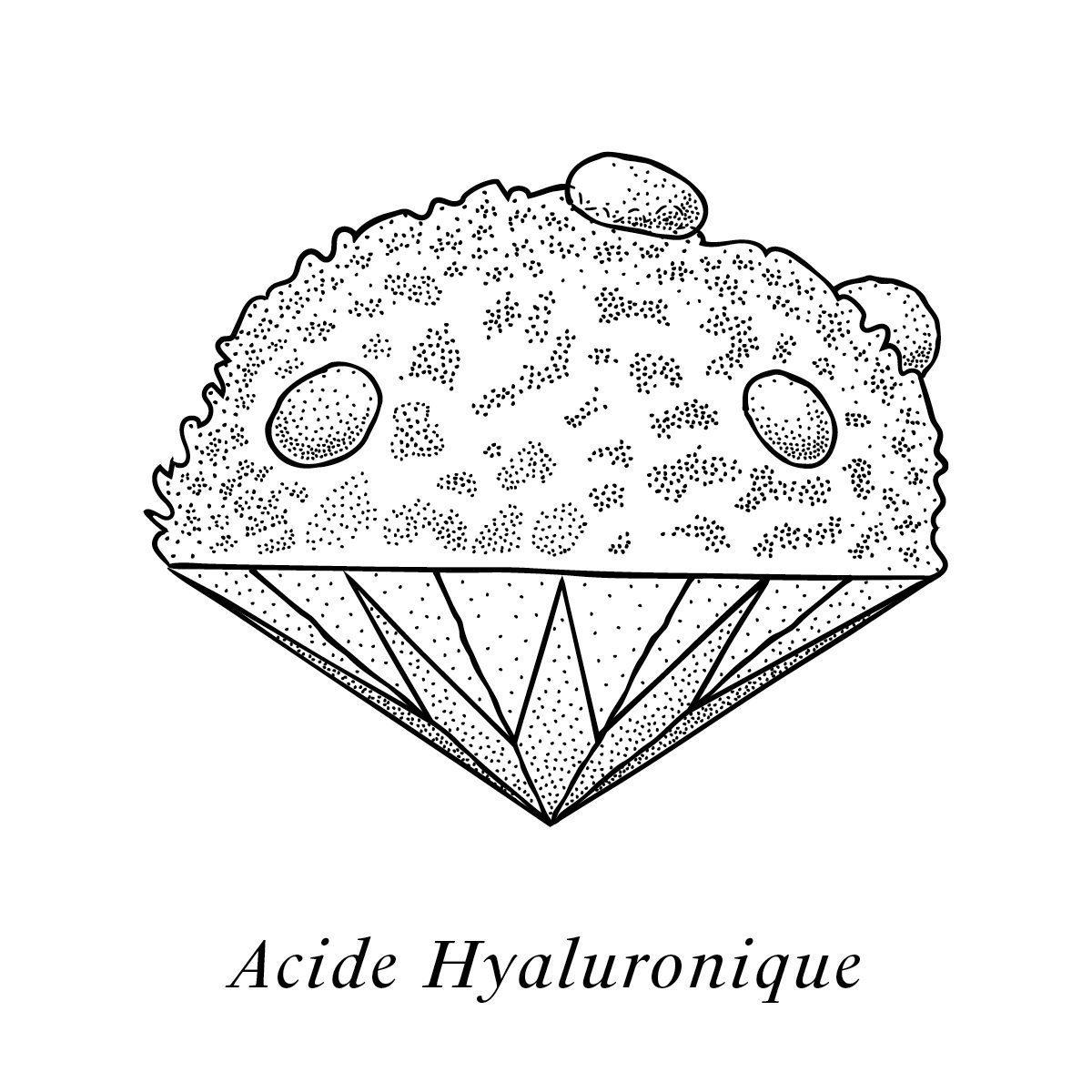 Illustration de l'acide hyaluronique, un des composants de la crème Claudius N°1, design ichetkar