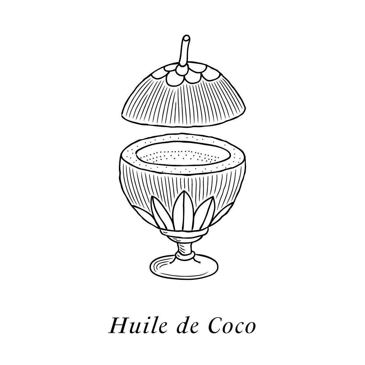 L'huile de coco dessiné par IchetKar, un des actifs du soin 100% non toxique et issu à 99% de source naturelle.