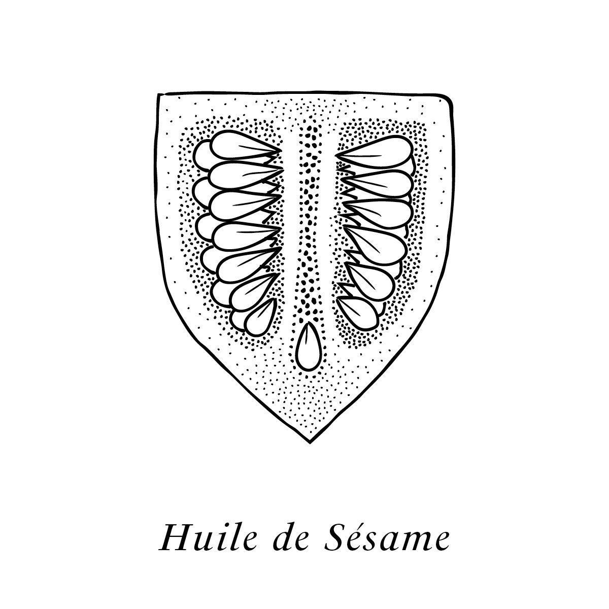 IchetKar illustre l'huile de sésame, un des actifs de la crème Claudius N°1, design ichetkar