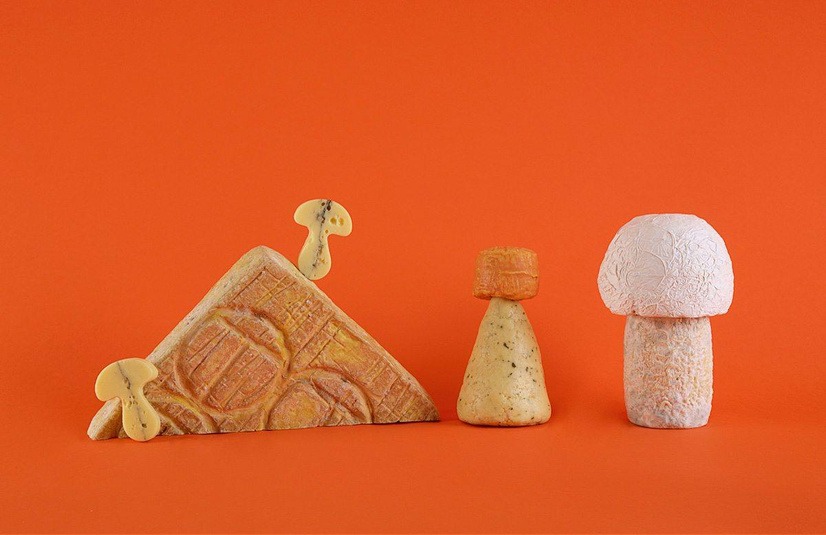 composition fromages de bourgogne champignon jean-charles kermann fond orange