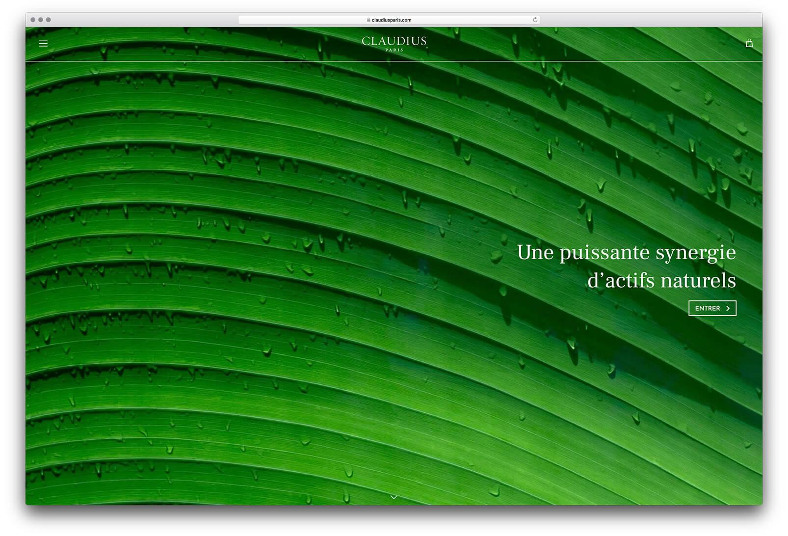 Site internet de Claudius, page d'accueille sur la synergie d'actifs naturels, design par Ichekar