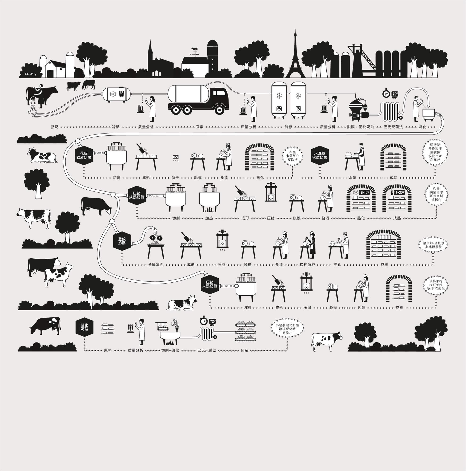 illustrations pédagogiques autour du fromage français sur les murs du concept-store chinois La crèmerie, dessiné par Ich&Kar