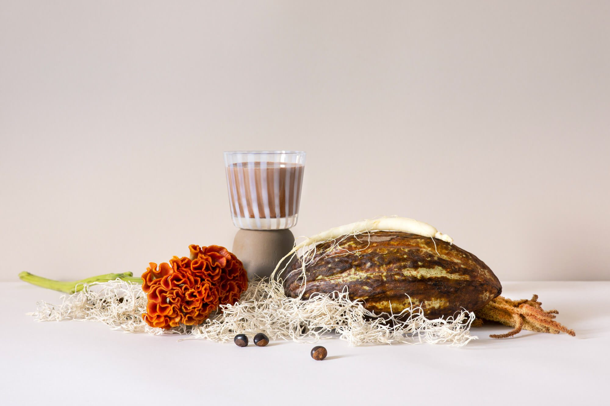 une nature morte autour du cacao et du guarana, pour la série de photographie autour des laits infusés, direction artistique Ich&Kar pour la milkfactory