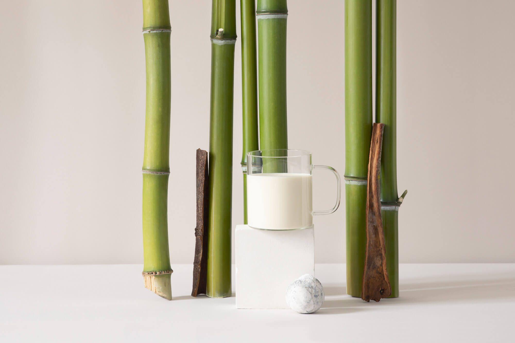 nature morte avec des bambous et de la canelle et du lait, photographiée par Virginie Perocheau sous la direction artistique d'Ich&Kar pour la milk factory