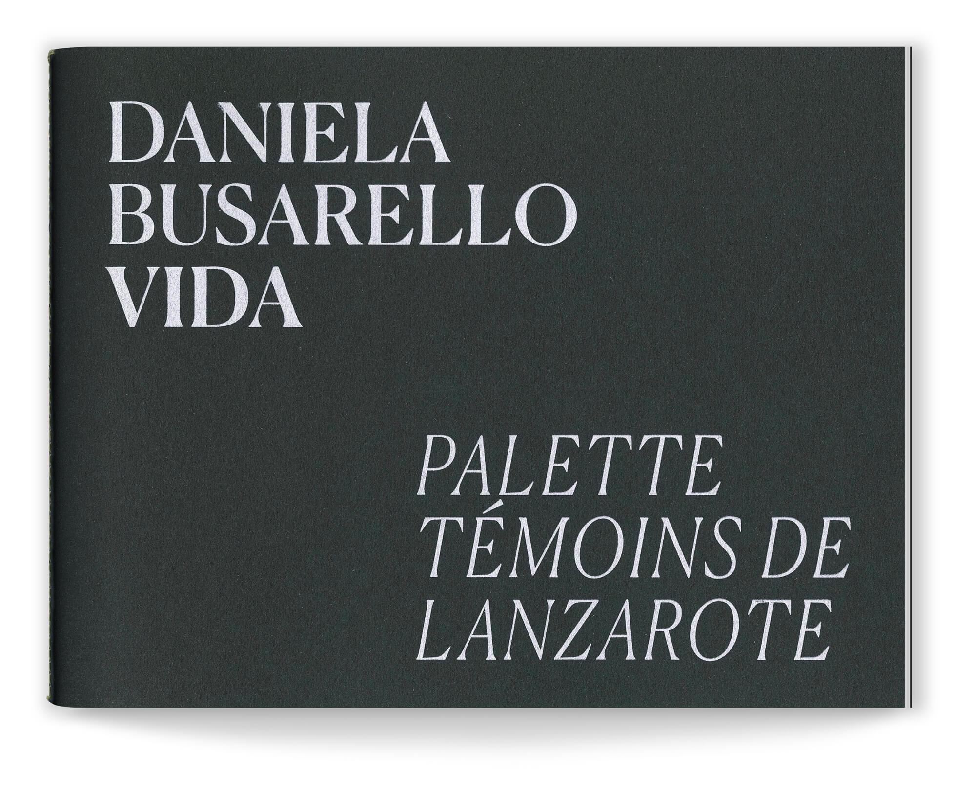Livre d'artiste de Daniela Busarello Couverture du livret Palette témoins de Lanzarote, papier Materica Ardesia et sérigraphie blanche, design IchetKar